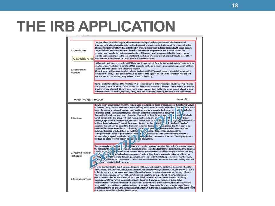 Irb 101 human subjects protection program and irb ppt download 18 the irb application example only pronofoot35fo Images