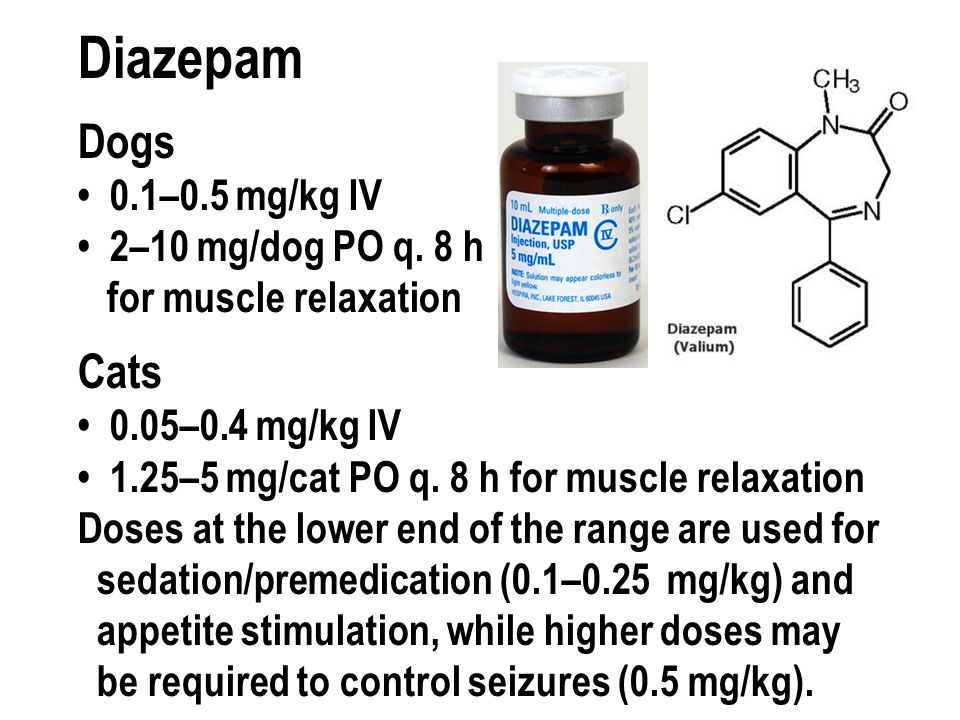 Diazepam Dogs Cats 0 1 5 Mg Kg Iv 2 10