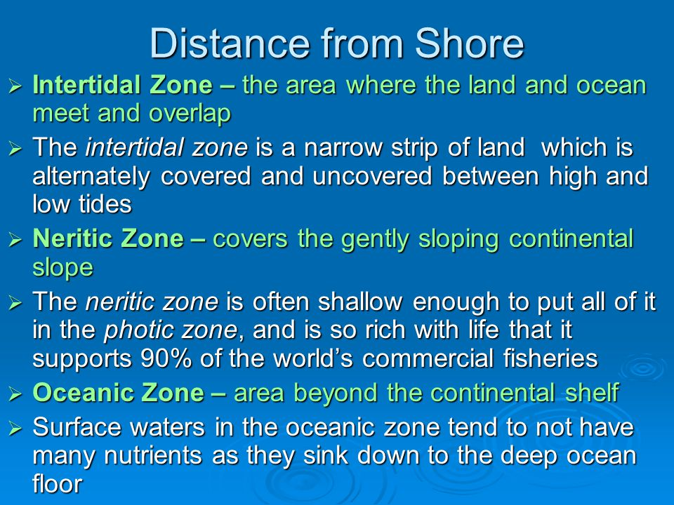 Distance from Shore Intertidal Zone – the area where the land and ocean meet and overlap.