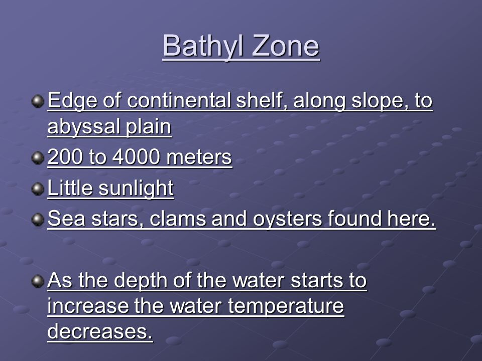 Bathyl Zone Edge of continental shelf, along slope, to abyssal plain