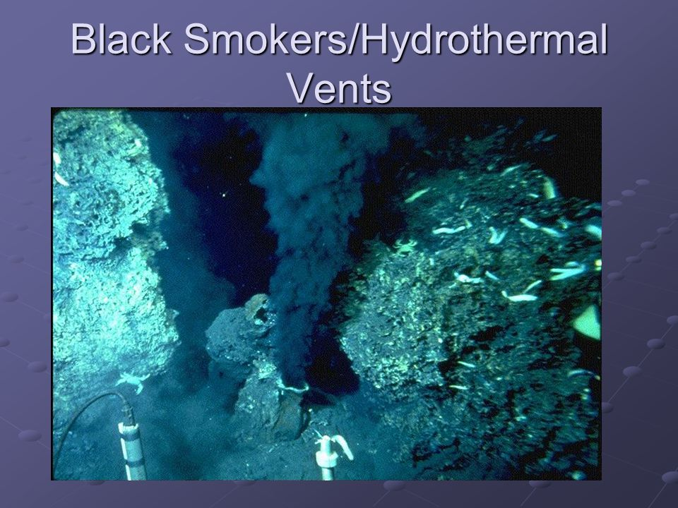 Black Smokers/Hydrothermal Vents