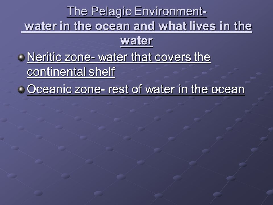 The Pelagic Environment- water in the ocean and what lives in the water