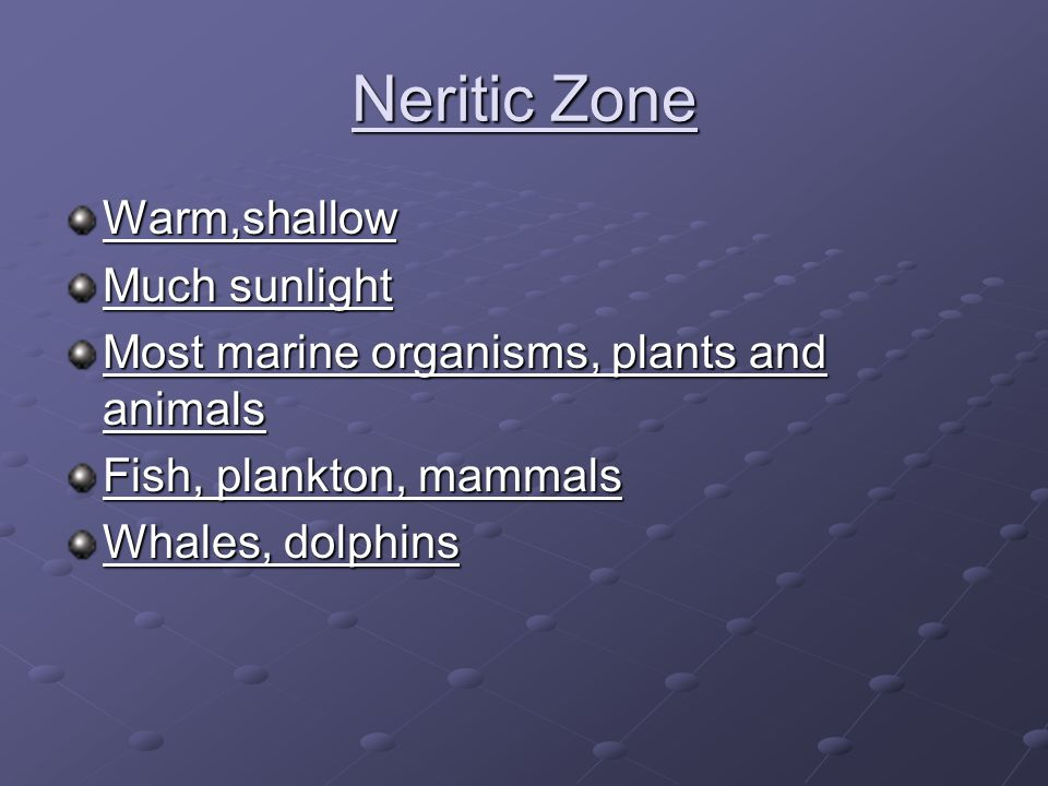 Neritic Zone Warm,shallow Much sunlight