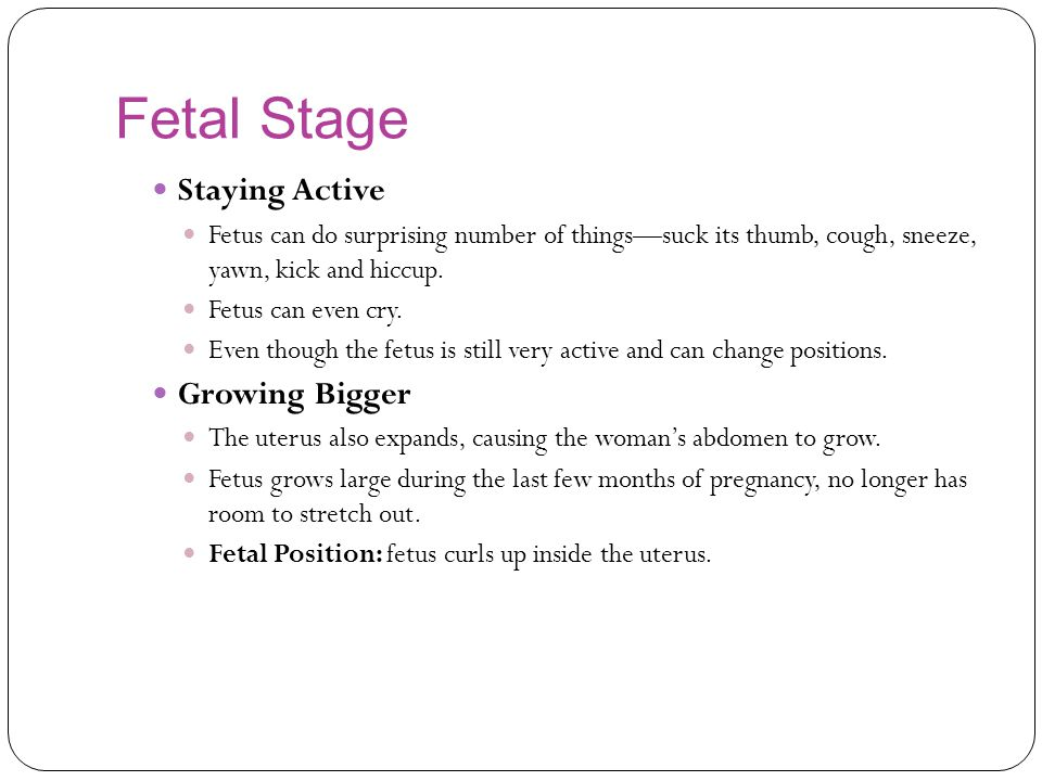Fetal Stage Staying Active Growing Bigger