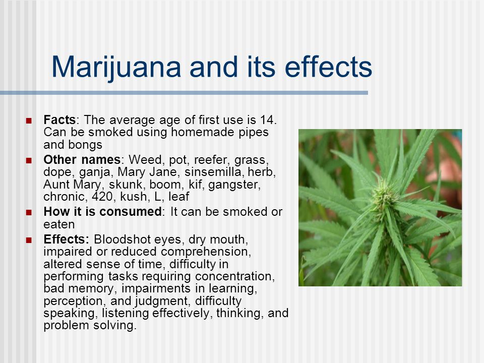 the positive and negative impacts of the legalization of marijuana essay Science essays: positive and negative effects of marijuana positive and negative effects of marijuana this essay positive and negative effects of marijuana and other 64,000+ term papers, college essay examples and free essays are available now on reviewessayscom.