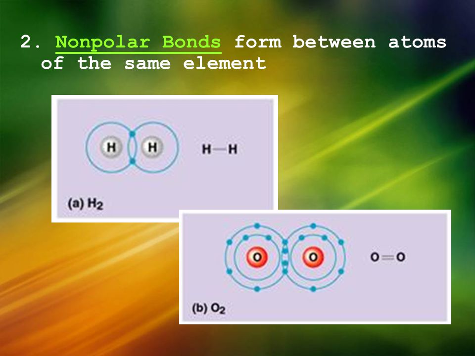 2. Nonpolar Bonds form between atoms of the same element
