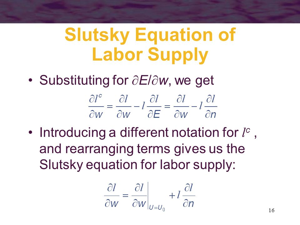 slutsky equation and negative elasticity of labor supply Labor demand and supply in a perfectly competitive market  supply, and elasticity an example of an individual's labor supply curve is given in figure.