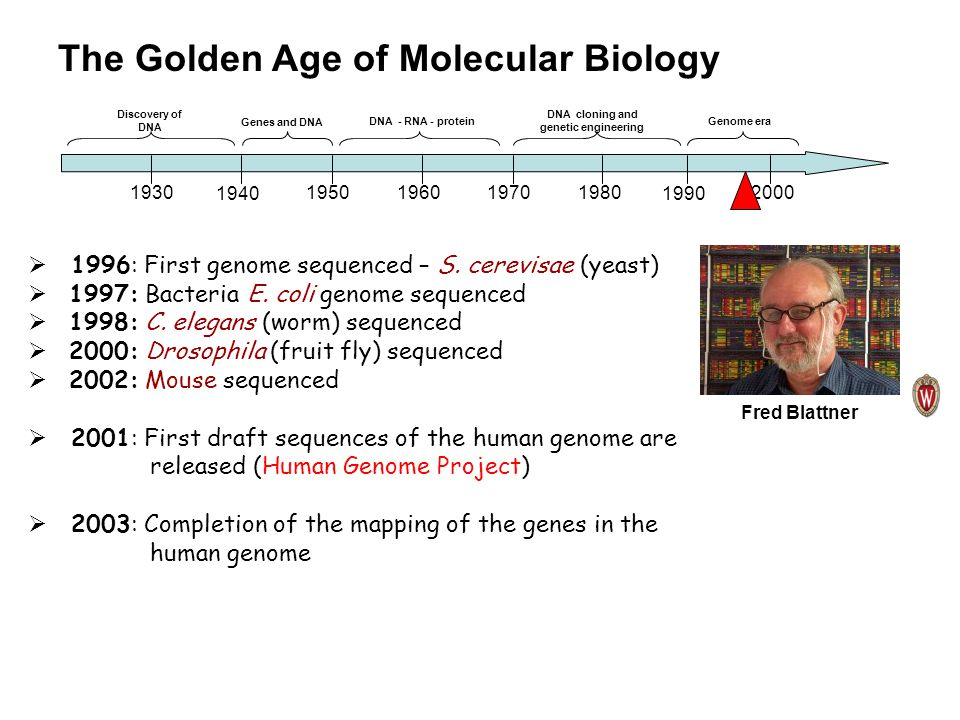 a history of the discovery of genetic engineering Genetic engineering is a deliberate modification of the characteristics of an organism by manipulating its genetic material this chapter describes how work carried out between 1970s and 1980s produced technologies that researchers now use to manipulate the genetic material of organisms.