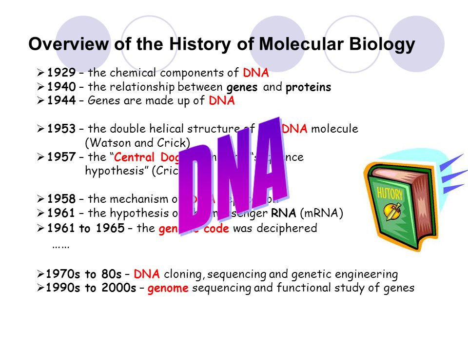 a history of genetic engineering and the early attempts of cloning Pros and cons of genetic engineering 'genetic engineering' is the process to alter the structure and nature of genes in human beings, animals or foods using techniques like molecular cloning and transformation.