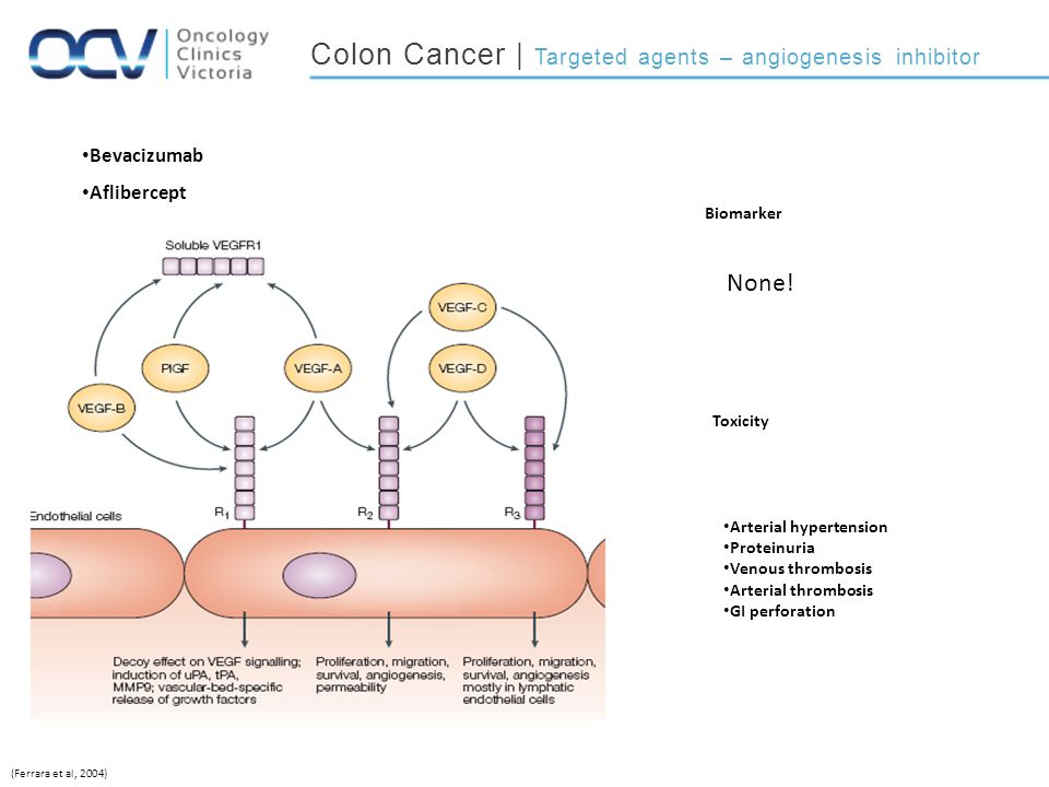Colon Cancer | Targeted agents – angiogenesis inhibitor
