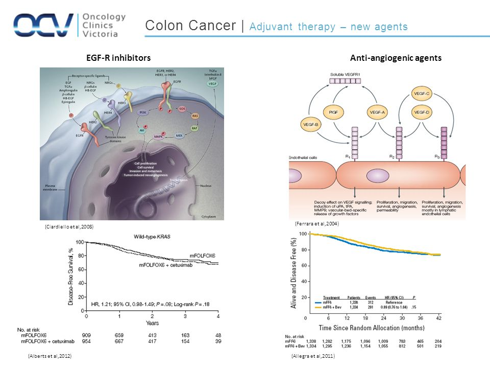 Colon Cancer | Adjuvant therapy – new agents