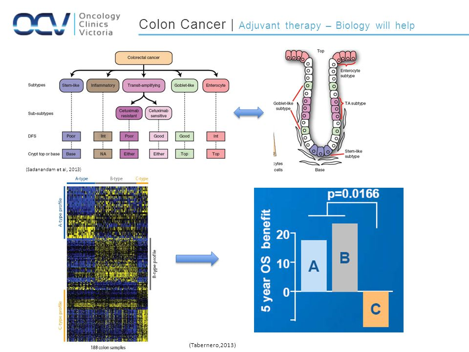Colon Cancer | Adjuvant therapy – Biology will help