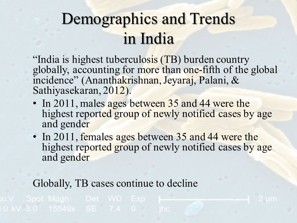 Demographics and Trends in India