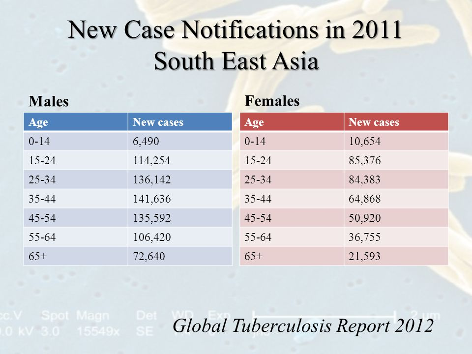 New Case Notifications in 2011 South East Asia