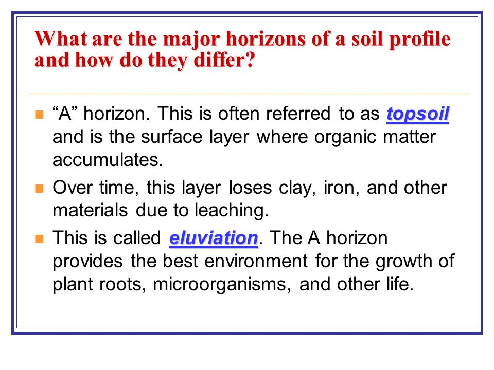 Student learning objectives ppt video online download for Soil zone of accumulation