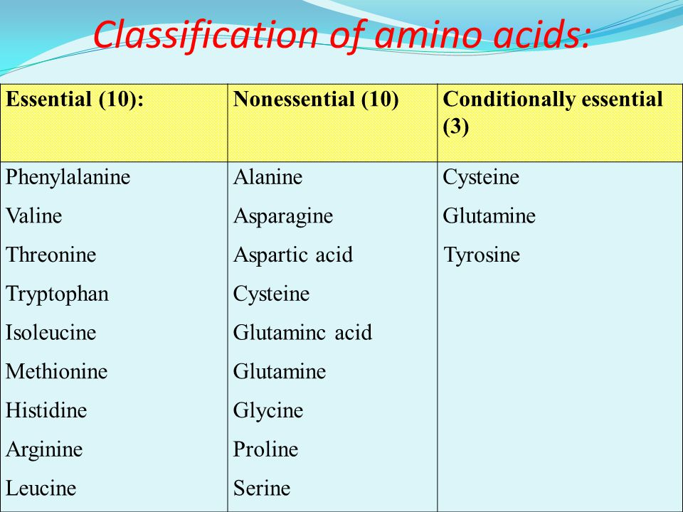 Proteins and Aminoacids - ppt video online download