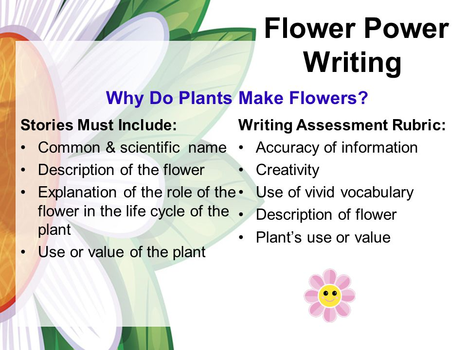 descriptive essay of a flower Descriptive essay - favorite place has a smell of summer flowers and lilac more descriptive essays essays.