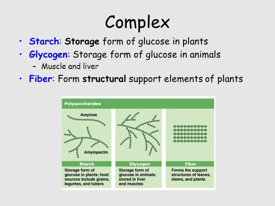 Carbohydrates. - ppt download