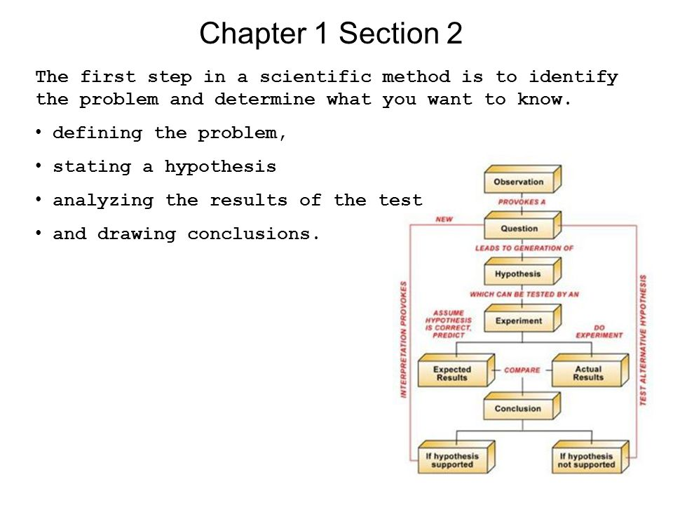 Chapter 1 Section 2 The first step in a scientific method is to identify the problem and determine what you want to know.