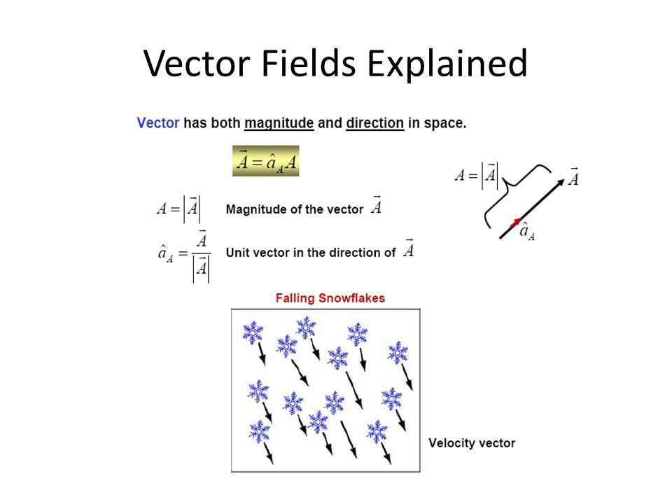 Vector Fields Explained
