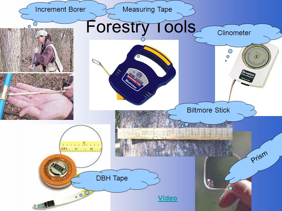 Forestry Tools Increment Borer Measuring Tape Clinometer