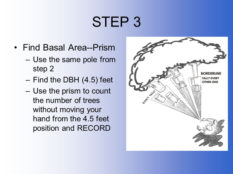STEP 3 Find Basal Area--Prism Use the same pole from step 2