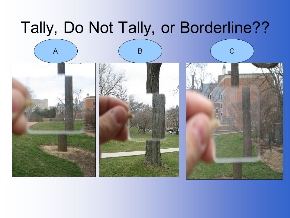 Tally, Do Not Tally, or Borderline
