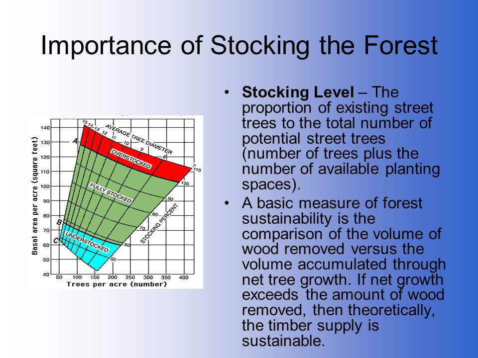 Importance of Stocking the Forest