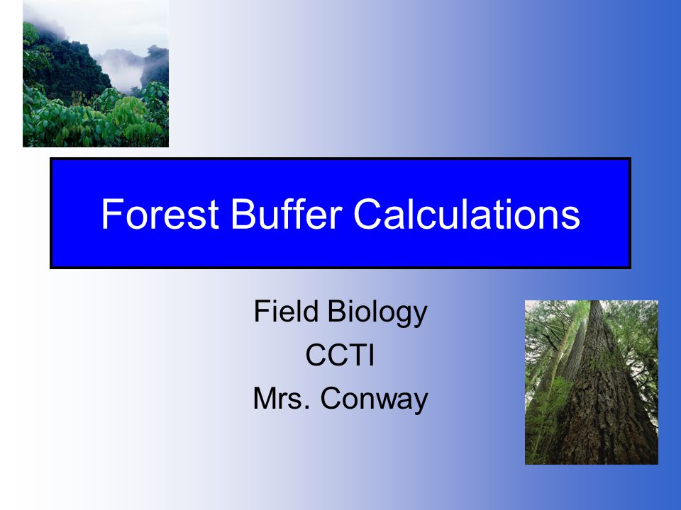 Forest Buffer Calculations