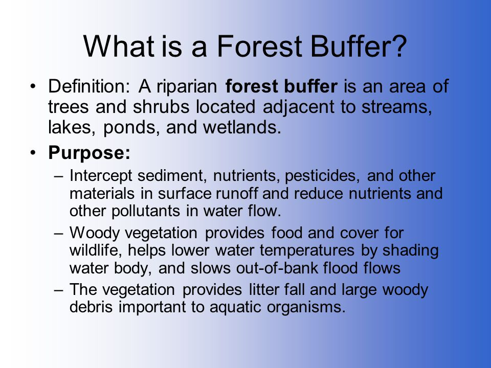 What is a Forest Buffer Definition: A riparian forest buffer is an area of trees and shrubs located adjacent to streams, lakes, ponds, and wetlands.