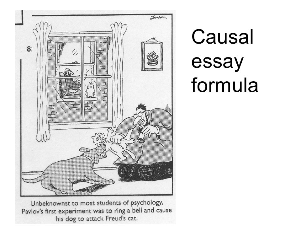 cause and effect essays ppt  24 causal essay formula