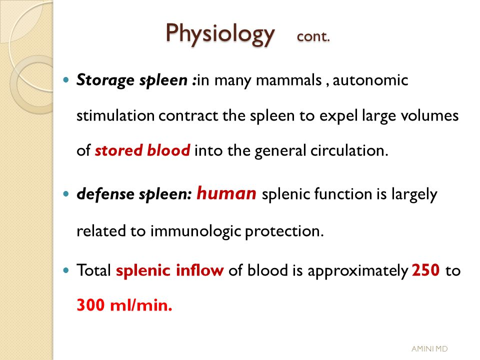 Spleen Surgical Aspects Ppt Download