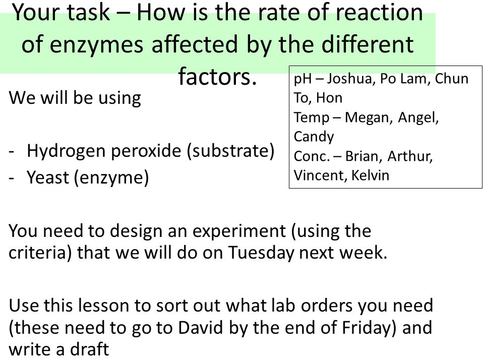 Your task – How is the rate of reaction of enzymes affected by the different factors.