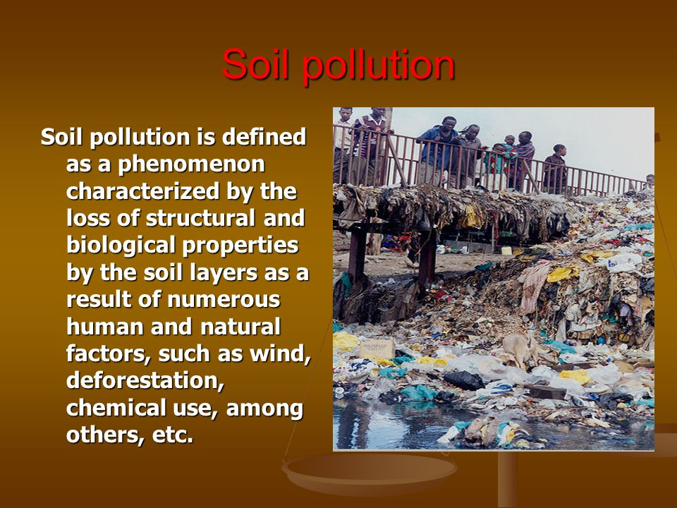 Effect of pollution on living organisms ppt video online for Soil pollution definition