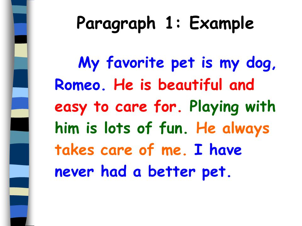 the five paragraph essay ppt  12 paragraph 1 example my favorite pet