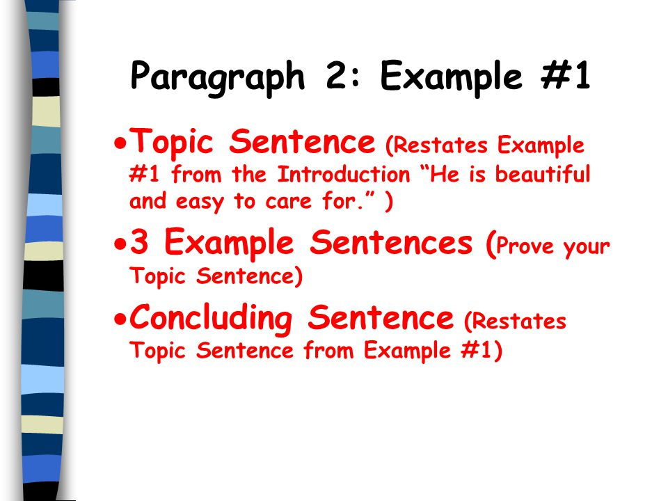 Paragraph 2: Example #1 Topic Sentence (Restates Example #1 from the Introduction He is beautiful and easy to care for. )