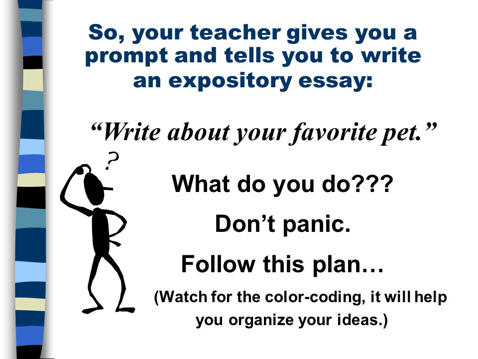 The Five Paragraph Essay Ppt Download