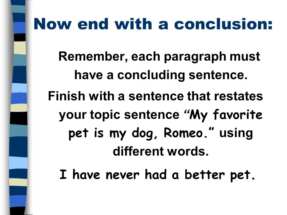 how to use conclusion in a sentence