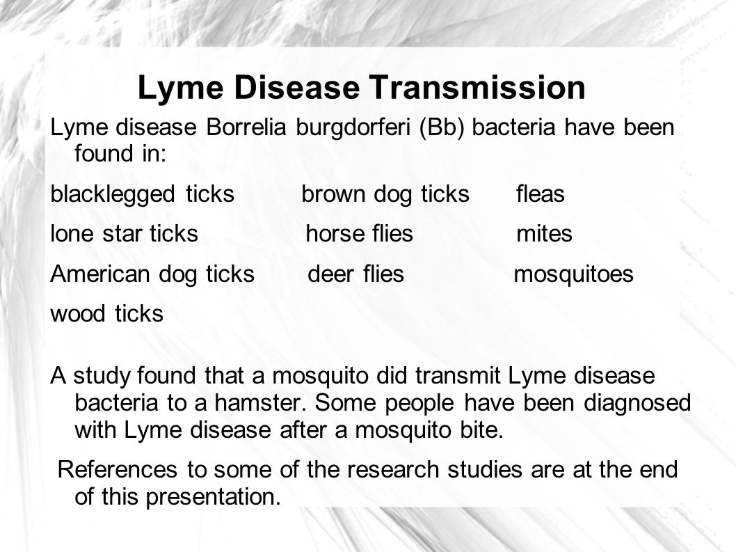 article review lyme disease essay The lyme times provides the best in features, news and commentaries, written by leading lyme-literate physicians, world-renowned scientists and patient advocates the journal explores a broad range of topics including treatment options, diagnostic testing, children and tick-borne diseases, disability coverage, insurance challenges and.