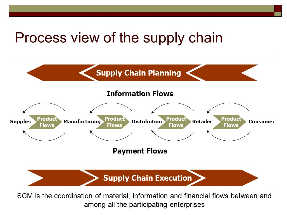 Process view of the supply chain