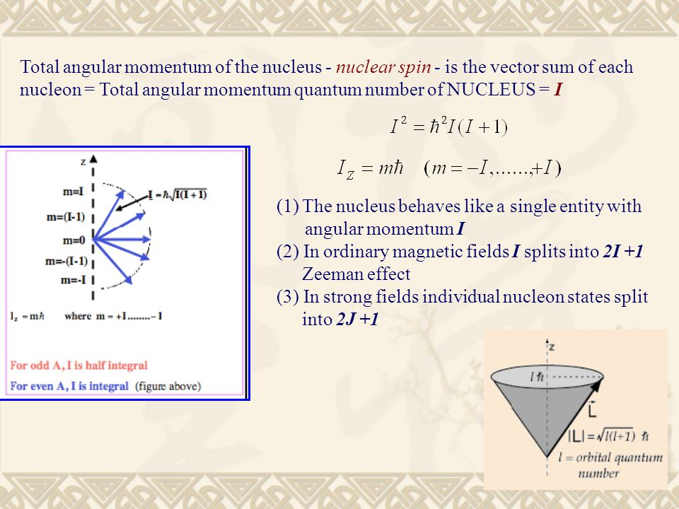 Intrinsic properties of a nucleus ppt video online download 6 total angular momentum ccuart