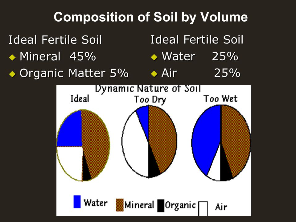 Soils biology ppt video online download for Nature and composition of soil