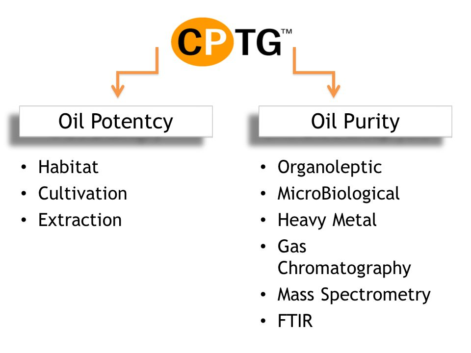 Oil Potentcy Sourcing Chemical Analysis Oil Purity Habitat Cultivation