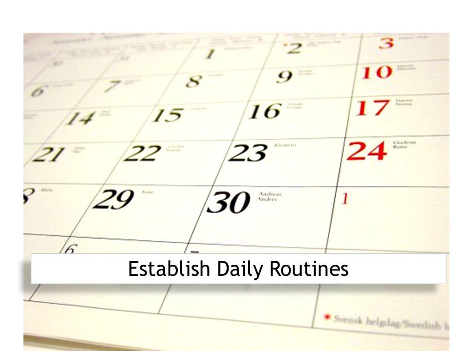 Establish Daily Routines