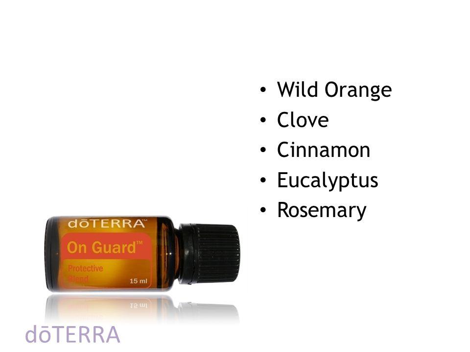 dōTERRA Wild Orange Clove Cinnamon Eucalyptus Rosemary