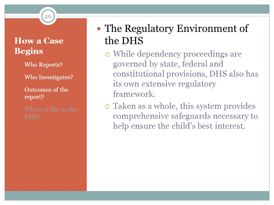 The Regulatory Environment of the DHS
