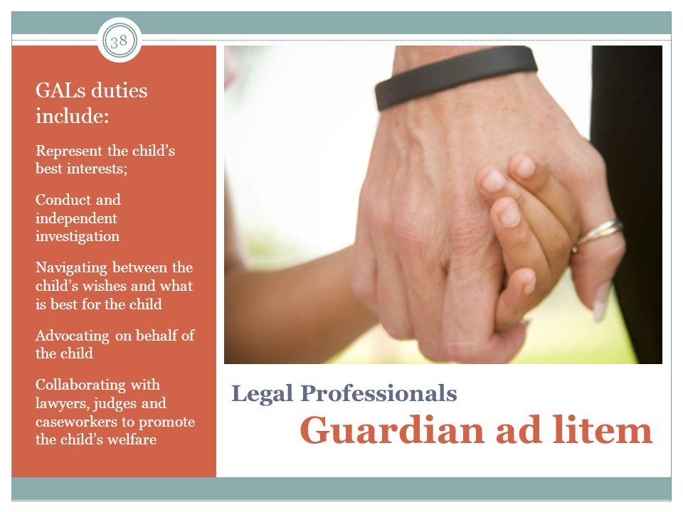 Legal Professionals Guardian ad litem