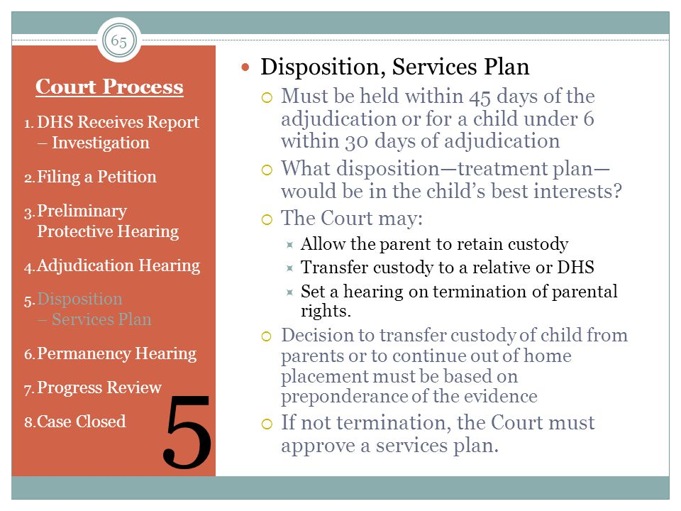 5 Disposition, Services Plan