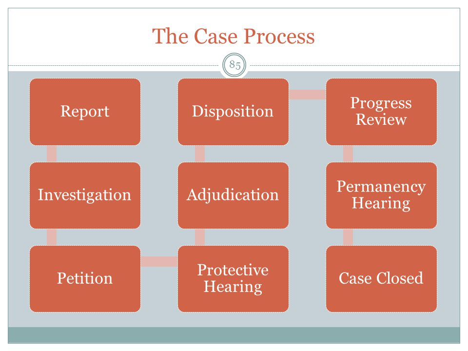The Case Process Report Investigation Petition Protective Hearing