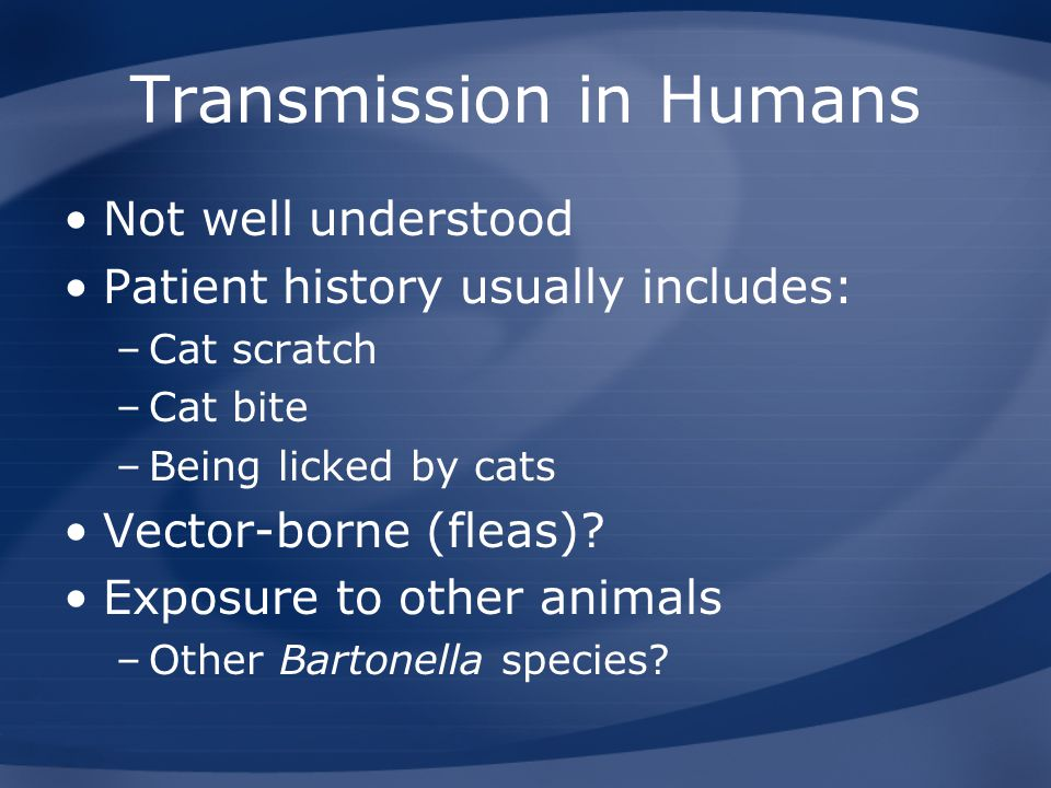 Transmission in Humans